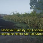 Medieval Dynasty где Солома или самое хорошее место где находится Соломы
